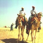 I and Alex riding camels